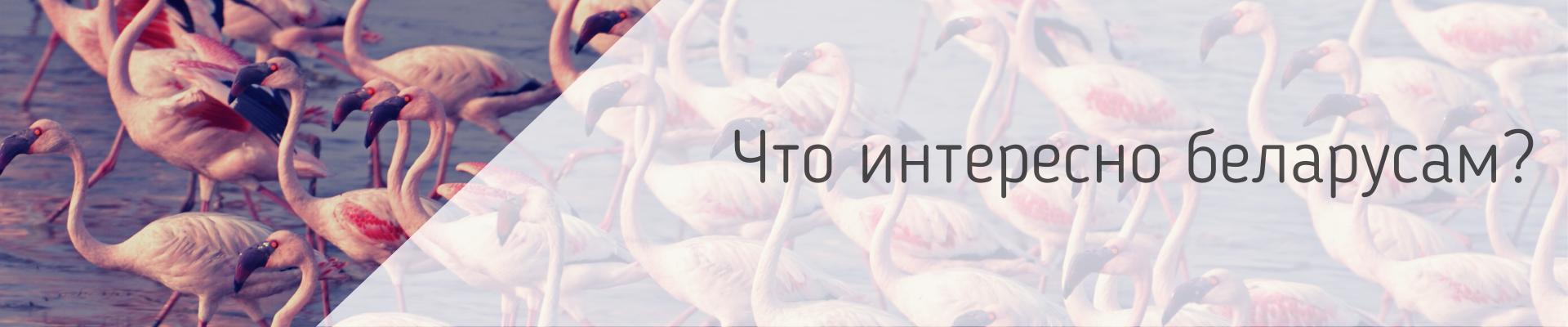 Что ищут в интернете молодые белорусы